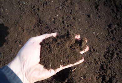 compost-turner-hand-in-pile